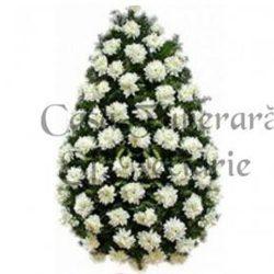crizanteme-70