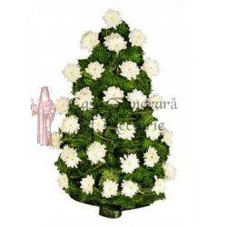 jerba-crizanteme-24-27-1