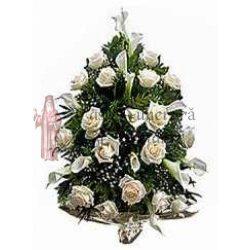 jerba-speciala-trandafiri-cale-46-1